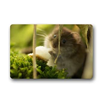 """Lovelife Cute ratón Animal naturaleza personalizado Felpudo (23.6x15.7"""")"""