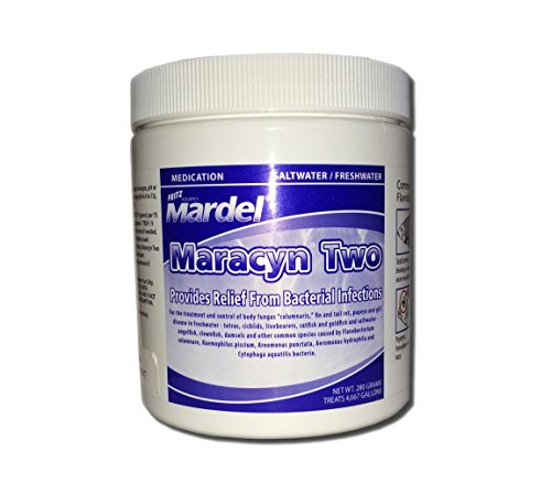 Maracyn Two Powder (Fritz Aquatics Mardel Maracyn Two Jar,)