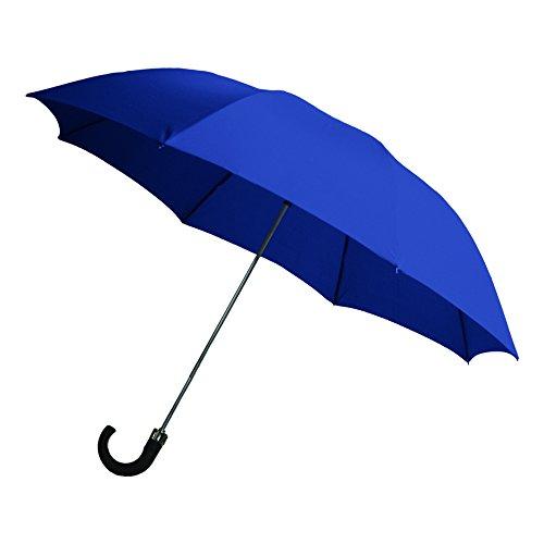 Rainbrella 2-Fold Auto Open Umbrella with Sleeve and Plastic