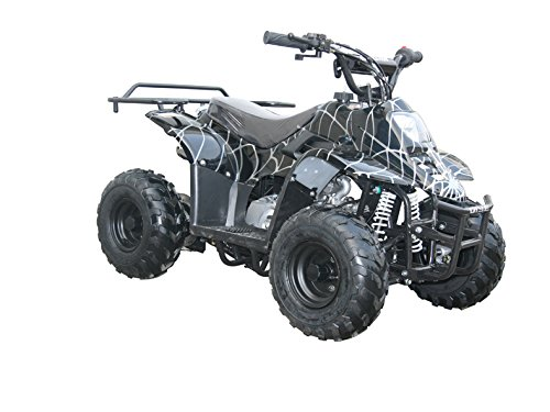 Coolster ATV-3050C 110cc Fully Automatic Mini Size for Kids Spider Black