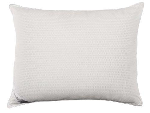 - Brookstone Outlast Gold Temperature Regulating Bed Pillow, Standard
