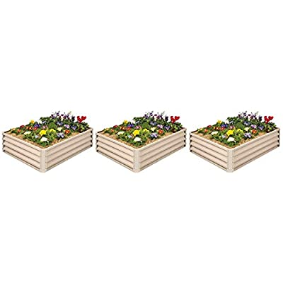 Metal Raised Garden Bed Kit - Elevated Planter Box For Growing Herbs, Vegetables, Flowers, and Succulents (3): Garden & Outdoor