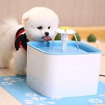 KNOSSOS Dispensador de Agua de Fuente de Agua de Gato Que Bebe Blanco y Azul automático del Animal doméstico Sano: Amazon.es: Hogar