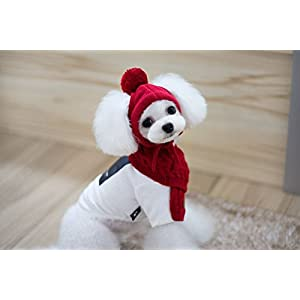 Fully Knit Winter Hat Scarf Set Warm Knitted Beanie Shawl Thick Loop Dog Puppy Pet Cat Photograph (M (3-7.5kg dog), red)