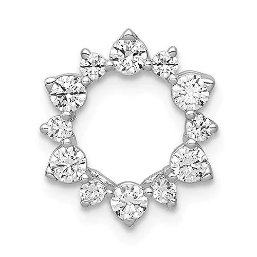 - 14k White Gold Lab Grown Diamond SI1/SI2, G-H Fancy Circle Chain Slide