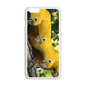 Parrot Family Hight Quality Plastic Case for Iphone 6plus