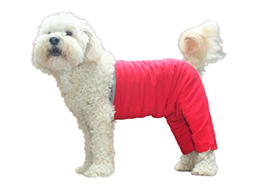 Mozzie Pants Washable Original Dog Pants/Diaper/Underwear...