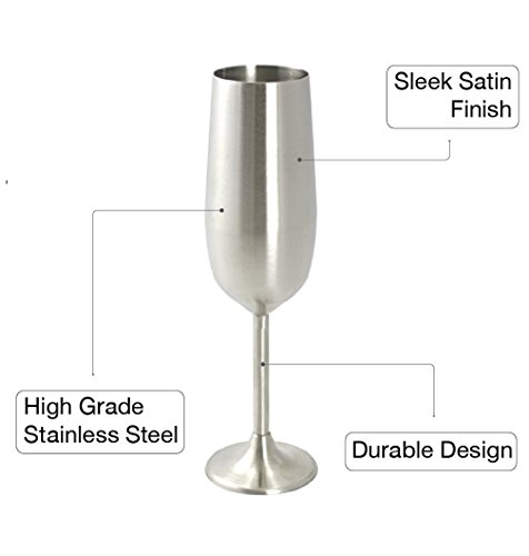 e5a8a6e6acb Modern Innovations Stainless Steel Champagne Flute, Set of 4 ...