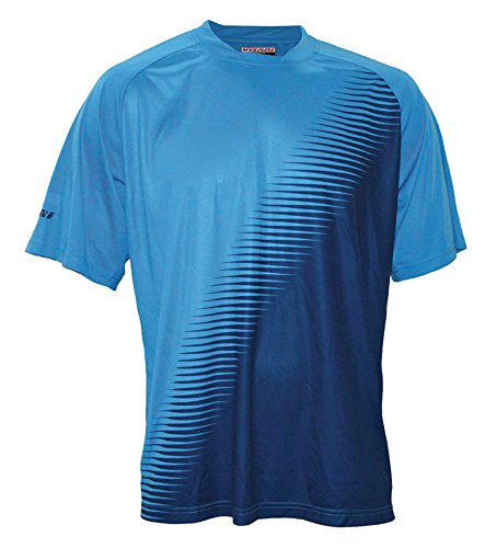 (Vizari Adult Turin Short Sleeve Goalkeeper Jersey, Light Blue/Dark Blue, Large)