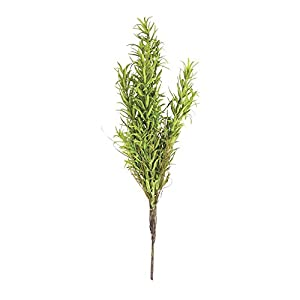 "Rosemary Bush Green Plastic - 12""H 1"