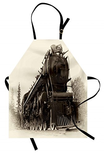 Ambesonne Steam Engine Apron, Antique Northern Express Train Canada Railways Photo Freight Machine Print, Unisex Kitchen Bib Apron with Adjustable Neck for Cooking Baking Gardening, Black Grey