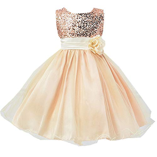 New Winter Girls Dress Princess Dress Party Wedding Dress Kids Dresses for Girls Christmas Costume C -