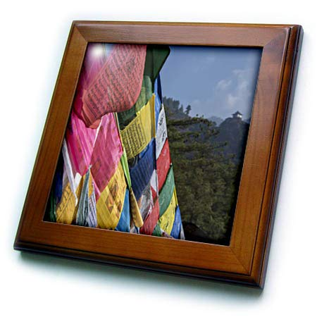 - 3dRose Danita Delimont - Religion - Bhutan, Paro. Prayer Flags at Tigers Nest, Himalayan Buddhist Temple. - 8x8 Framed Tile (ft_312589_1)