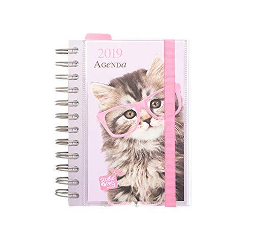 Grupo Erik Editores AGEDP1913 - Agenda anual 2019 con diseño Studio Pets Cat, día pagina: Amazon.es: Oficina y papelería