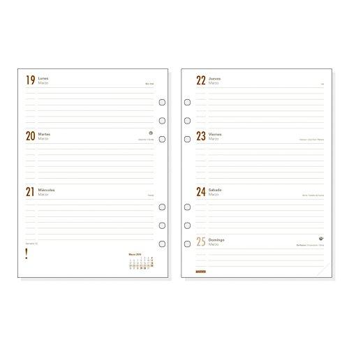 Amazon.com: Finocam Open R1093-2018 - Planificador anual de ...