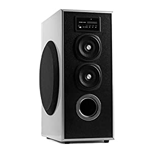 OBAGE MT-600 Home Theaters Bluetooth Speakers Tower (Silver) with Bluetooth 5.0,USB, Aux, FM, MMC