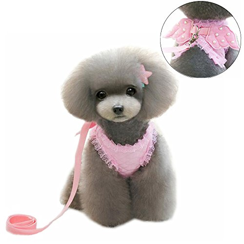 M2cbridge Puppy Harness Leash Collar product image