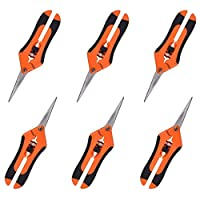 GROWNEER 6 Pcs Pruning Shears Gardening Hand Pruning Snips with Straight Stainless Steel Precision Blades, Orange