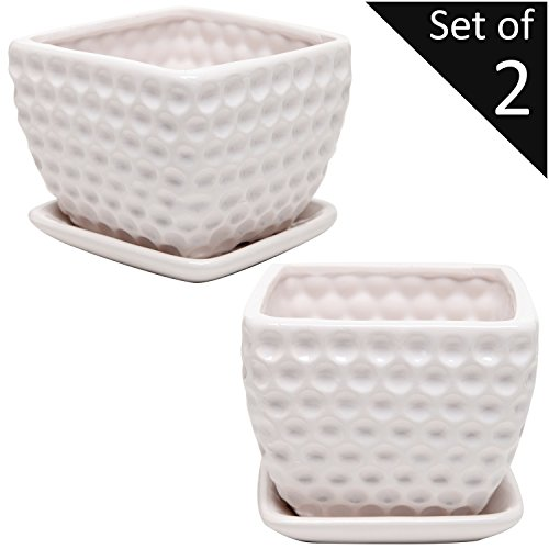 Set of 2 Modern Small White Square Ceramic Golf Ball Textured Dimple Design Planter Pots Tree Of Life Pottery