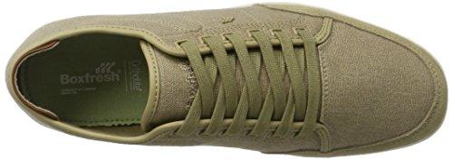 Boxfresh Herren Sparko Sh WSD CNVS/Sde Kelp Sneaker Braun (Beige)