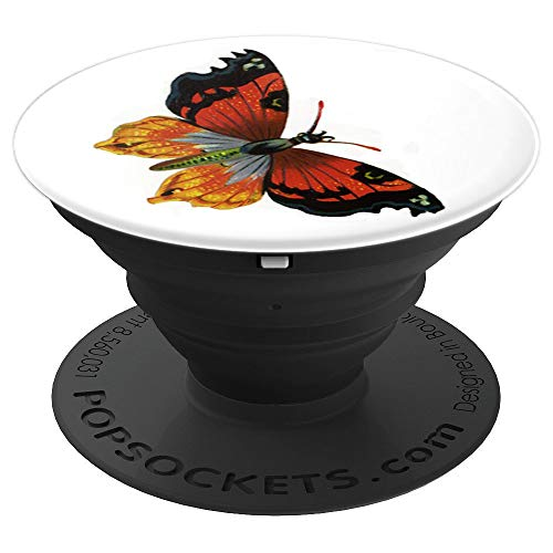 (Vintage Illustration Insects, a Beautiful Butterfly - PopSockets Grip and Stand for Phones and Tablets)