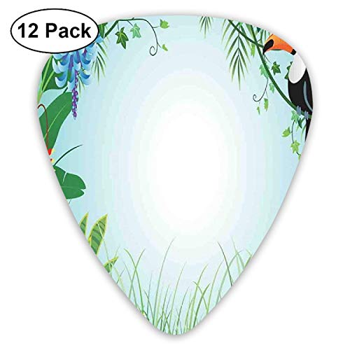 Guitar Picks 12-Pack,Exotic Forest With Toco Toucan Bird Anthurium And Hibiscus Flowers Jungle Ecology ()