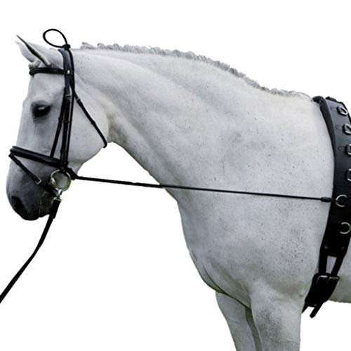 (Horse Black Neck Stretcher Elastic Horse Rein Strap Rope Adjustable with Plastic Buckles Horse Equestrian Supplies 10ft )