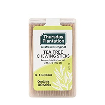 Australian Chewing Sticks (Nature's Plus Tea Tree Thursday Plantation Toothpicks, 100 Count)