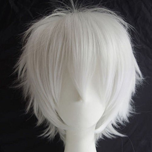 Unisex Sexy Short Straight Anime Cosplay Wig Hair Tail Bangs Fluffy Heat Resistant Japanese Kanekalon Synthetic Fiber (60's Ken Costume)