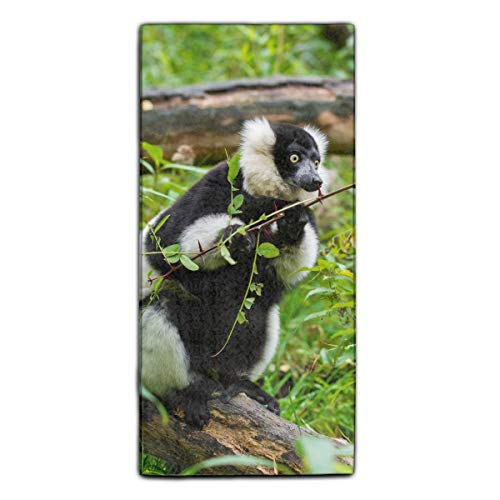(Ruffed Lemur Astonishment Branches Printed Kitchen Towels/Washcloths/Dish Rags,Multipurpose for Kitchen,Bathroom and Car)