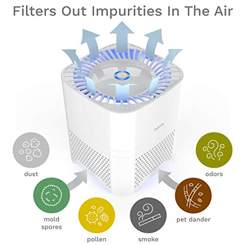 Homelabs 3 In 1 Compact Ionic Hepa Filter Best Bidet N