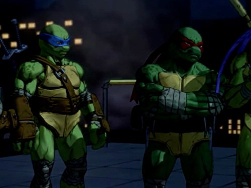 Ninja Teenage Mutant Turtles (Turtle Power)