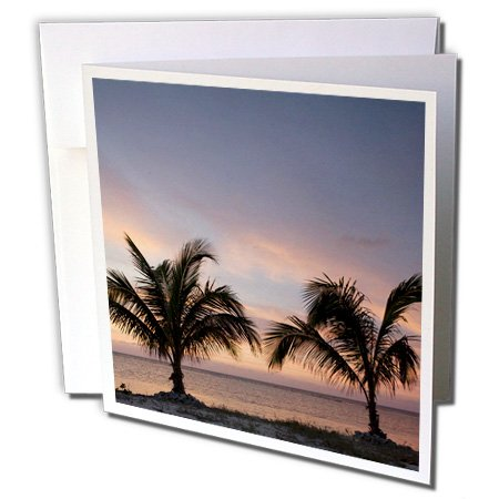 3dRose Cayman Islands Palm Trees Caribbean Sea-CA42 PSO0079 Paul Souders Greeting Cards, Set of 6 (gc_75600_1)