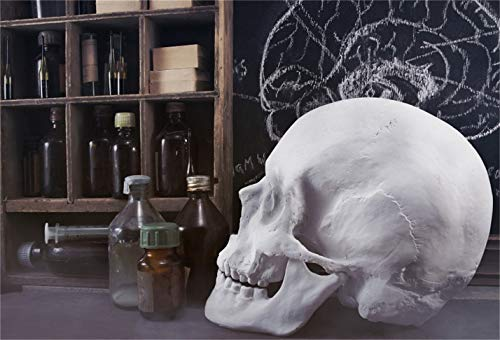LFEEY 6x4ft Halloween Magic Potion Ingredient Bottles Background Wizard Witch Room Skull Photography Backdrop Spellbooks Magic Power Chemical Book Bookcase Photo Studio Props Vinyl Banner -