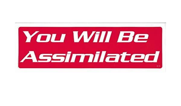 OR BE Taxed New Political Novelty Car Bumper Sticker//Decal for Cars for Trucks for Adults Liberal Democrat Gear Tatz Churches Should Stay Out of Politics