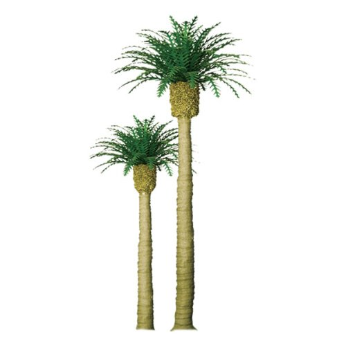 Professional Series: Phoenix Palm