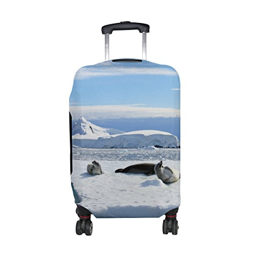 Crabeater Seal - Cooper girl Crabeater Seals On Ice Floe Travel Luggage Cover Suitcase Protector Fits 31-32 Inch