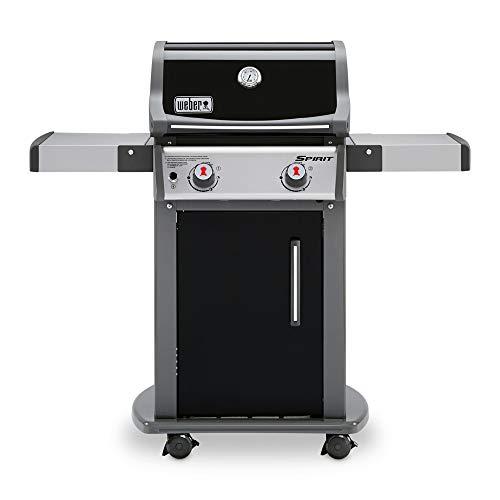 Amazon Com Weber 46110001 Spirit E 210 Lp Gas Grill