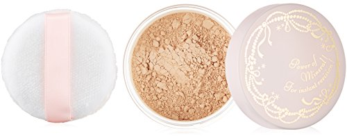 INTERGATE Beauty filter foundation 2 natural skin color 9g (Loose Makeup Powder The Shiseido)