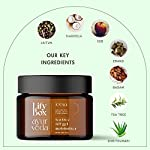 Lifybox Ayurveda Tea Tree Face Moisturizer with SPF 25+ for Acne Prone, Oily and Normal Skin Suitable All Skin Types in…