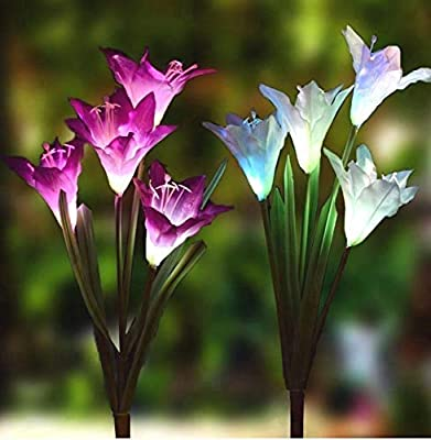 Pure Ponta Solar Flower Lights   2 Pack of Solar Stake Lights with 8 Solar Flowers   Multi Color Changing LED Flower Lights Powered by Premium Solar Panels (4 White & 4 Purple Solar Flowers)