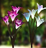 Pure Ponta Solar Flower Lights | 2 Pack of Solar Stake Lights with 8 Solar Flowers | Multi Color Changing LED Flower Lights Powered by Premium Solar Panels (4 White & 4 Purple Solar Flowers)