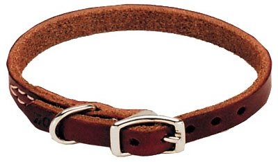 Coastal Pet 02104 B LAT16 Leather Dog Collar, 1/2 by 16-Inch ()