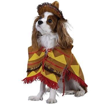 Pet Costume- Lil Bandito -