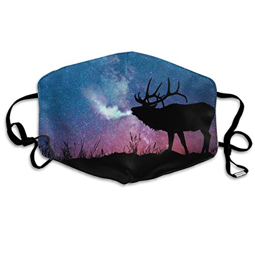 Galaxy Starry Night Elk Anti-Dust Earloop Mouth Mask for Women Men, Anti Flu Pollen Cycling Painting Half Face Mouth Mask - Adjustable Elastic Band Respirator -