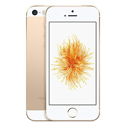 Apple iPhone SE, GSM Unlocked, 16GB - Gold (Renewed) (Apple Iphone 6 And 6 Plus Comparison)