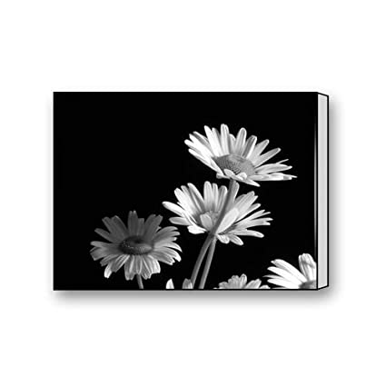 8e8a0791fbc Image Unavailable. Image not available for. Color  Black and White Flower  Custom Canvas Print ...