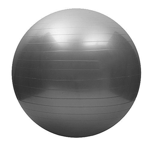 Price comparison product image Exercise Ball,  65CM Anti-Burst Fitness Exercise Stability and Yoga Ball Anti-Slip Thickening Yoga Balls Slip Resistant Balance Stability Ball GYM GRADE QUALITY with Foot Pump (Gray)