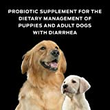 Purina FortiFlora Probiotics for Dogs, Pro Plan