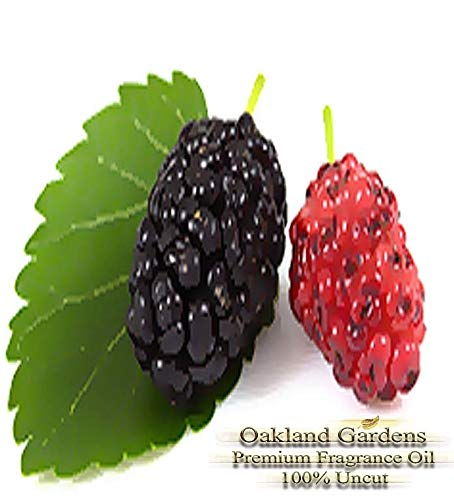 (M) Mulberry Reed Sticks & Diffuser Oil by OG - Dark Cherry and ripe Strawberry Blended with Tangerine, Orange and Mango ~!! (16 oz (480 ml)) by Premium Reed & Diffuser Oils by OG (Image #3)